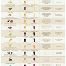 """Craft Beer and Food Pairing Guide Chart 18""""x28"""" (45cm/70cm) Poster"""