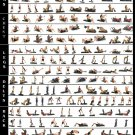 "Complete Gym Workout Exercises Chart  18""x28"" (45cm/70cm) Canvas Print"