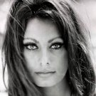 "Sophia Loren 18""x28"" (45cm/70cm) Poster"