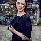 "Game of Thrones Arya Stark 13""x19"" (32cm/49cm) Polyester Fabric Poster"