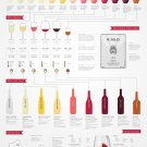 "Basic Wine Guide Chart  18""x28"" (45cm/70cm) Canvas Print"
