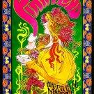 "Pink Floyd Concert 18""x28"" (45cm/70cm) Poster"