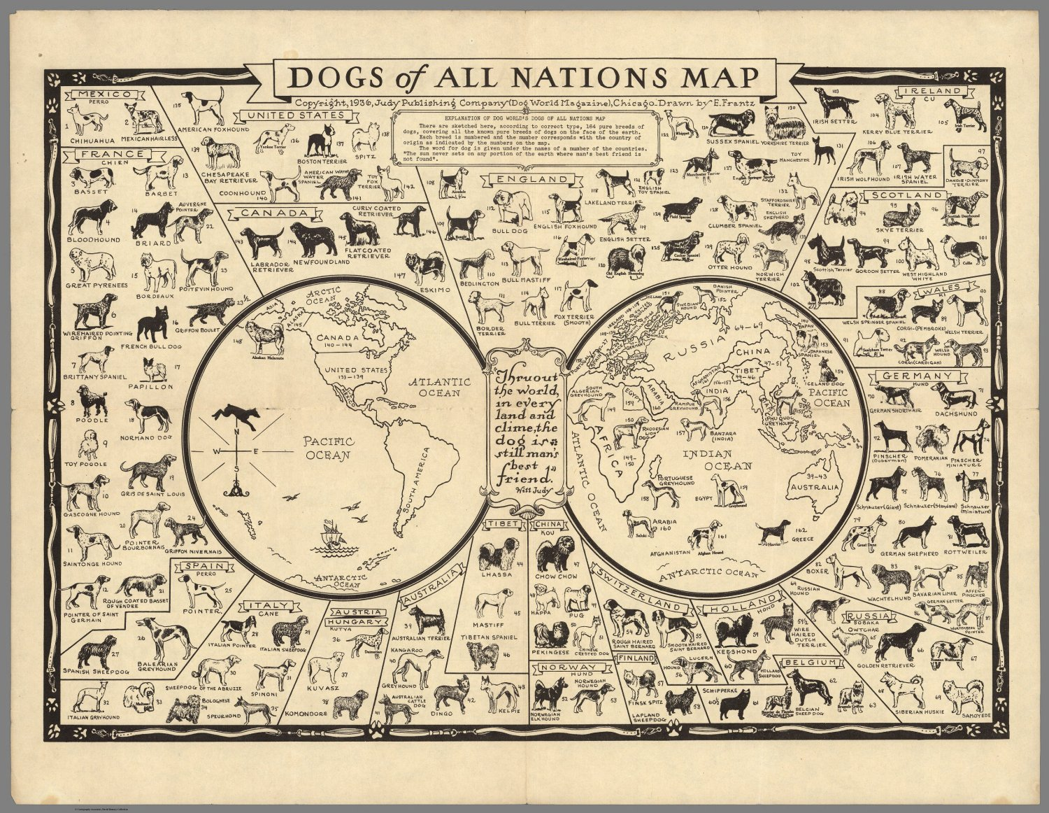 "Dogs of All Nations Map Infographic  18""x28"" (45cm/70cm) Canvas Print"