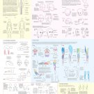 """Big Guide to Drawing the Body 18""""x28"""" (45cm/70cm) Canvas Print"""