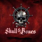 """Skull and Bones Pirate Ship Game 13""""x19"""" (32cm/49cm) Polyester Fabric Poster"""
