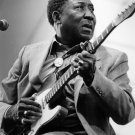 """Muddy Waters 13""""x19"""" (32cm/49cm) Polyester Fabric Poster"""