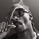 "Snoop Dogg  13""x19"" (32cm/49cm) Polyester Fabric Poster"