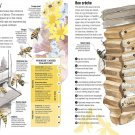 """Bee Hive Activity Infographic Chart 18""""x28"""" (45cm/70cm) Poster"""