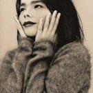 "Björk 13""x19"" (32cm/49cm) Polyester Fabric Poster"