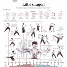 "Little Dragon Bruce Lee Infographic Chart 13""x19"" (32cm/49cm) Polyester Fabric Poster"
