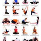"""Yoga Floor  and Seated Postures Chart  18""""x28"""" (45cm/70cm) Canvas Print"""