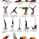 "Yoga Inversions Chart  18""x28"" (45cm/70cm) Poster"