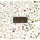 "The Various Varieties of Vegetables Chart 13""x19"" (32cm/49cm) Polyester Fabric Poster"