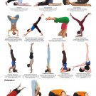 """Yoga Inversions Chart 13""""x19"""" (32cm/49cm) Polyester Fabric Poster"""