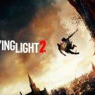 "Dying Light 2 Game 18""x28"" (45cm/70cm) Poster"