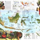"""Indonesia Animals Infographic Chart 13""""x19"""" (32cm/49cm) Polyester Fabric Poster"""
