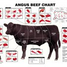 """Angus Beef Chart 18""""x28"""" (45cm/70cm) Poster"""