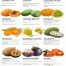 """15 weird and exotic fruits to hunt down Chart 13""""x19"""" (32cm/49cm) Polyester Fabric Poster"""