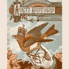 "The Avett Brothers Concert Tour  18""x28"" (45cm/70cm) Poster"
