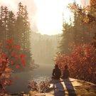 "Life Is Strange 2 Game 18""x28"" (45cm/70cm) Poster"