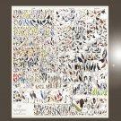 "Birds of North America Chart 18""x51"" (45cm/130cm) Bundle of 2 Canvas"