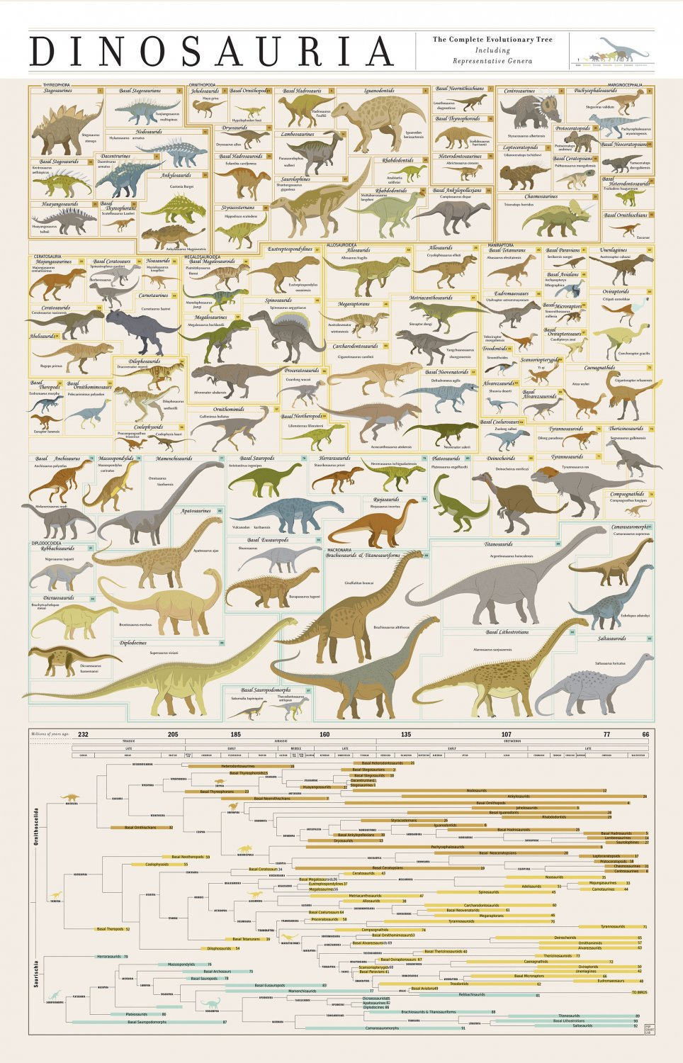 "The Complete Evolutionary Dinosaur Tree Chart  18""x28"" (45cm/70cm) Poster"