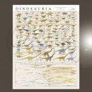 "The Complete Evolutionary Dinosaur Tree Chart 18""x28"" (45cm/70cm) Bundle of 2 Canvas"