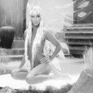 "Cher  18""x28"" (45cm/70cm) Canvas Print"