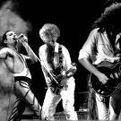 "Freddie Mercury Queen 18""x28"" (45cm/70cm) Poster"