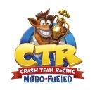 "Crash Team Racing Nitro Fueled 18""x28"" (45cm/70cm) Canvas Print"