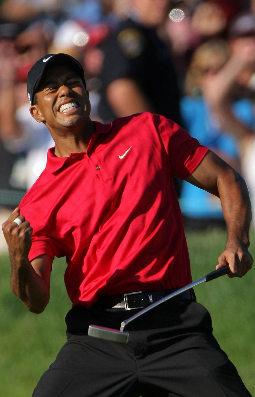 "Tiger Woods 18""x28"" (45cm/70cm) Canvas Print"