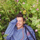 "Harry Styles 8""x12"" (20cm/30cm) Satin Photo Paper Poster"