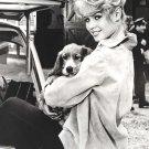 "Brigitte Bardot  8""x12"" (20cm/30cm) Satin Photo Paper Poster"