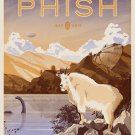 "Phish Concert 8""x12"" (20cm/30cm) Satin Photo Paper Poster"