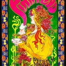 "Pink Floyd Concert 8""x12"" (20cm/30cm) Satin Photo Paper Poster"