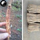 Buy Real Astragalus Seeds 100pcs Plant Medicinal Herbal Radix Astragali For Huang Qi