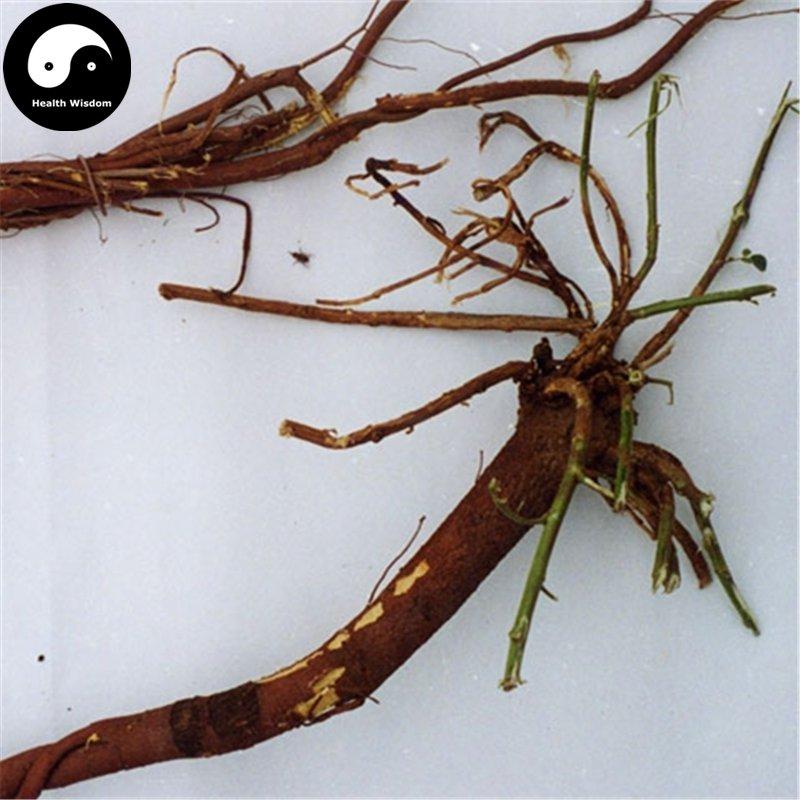 Buy Licorice Seeds 400pcs Plant Glycyrrhiza Glabra For Root Herb Gan Cao