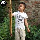 Buy Burdock Seeds 100pcs Plant Herb Arctium Lappa For Burdocks Roots Niu Bang