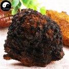 Inonotus Obliquus 100g Chinese Chaga Mushroom For Immune Wild Bai Hua Rong