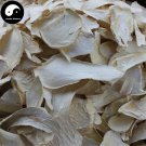 King Oyster Mushroom 500g Chinese Pleurotus Eryngii French Horn