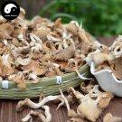 Oyster Mushroom 200g Chinese Pleurotus Ostreatus For Immune Hiratake Ping Gu