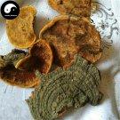 Trametes Robiniophila 50g Chinese Huai Er Mushroom TRM