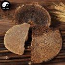 Reishi Mushroom 500g Chinese Wild Lingzhi Ganoderma Lucidum Feng Wo Ling Zhi