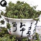 White Ginseng Flower Tea 100g Chinese Panax Ginseng Flower Bai Ren Shen Hua