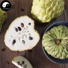 Buy Annona Squamosa Fruit Tree Seeds 60pcs Plant Sweetsop For Custard Apple