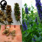 Buy Chia Seeds 800pcs Plant Chinese Salvia Hispanica Seed Qi Ya Zi
