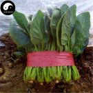 Buy Spinacia Oleracea Vegetable Seeds 400pcs Plant Big Leaf Vegetable Spinacia
