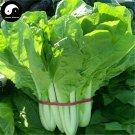 Buy Baby Bok Choy Vegetables Seeds 800pcs Plant Cabbage Brassica Campestris