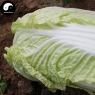 Buy Baby Cabbage Vegetables Seeds 200pcs Plant Chinese Baby Cabbage