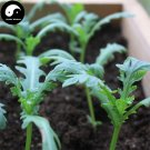 Buy Crown Daisy Vegetables Seeds 200pcs Plant Chinese Green Leaf King Vegetable Tong Hao